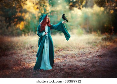 Beautiful red haired girl in green medieval dress in a hood  holding a crow on her hand and looking on it . Fairy tale story about brave heart woman.Warm art work