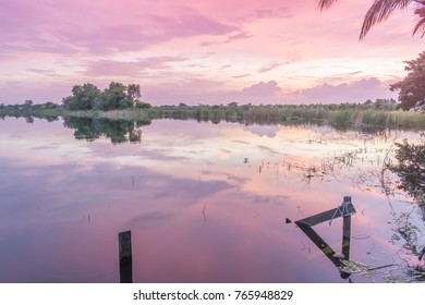 Beautiful red, orange and pink color in sky after sunset and water reflection  in swamp, like a mirror also look like water color painting.