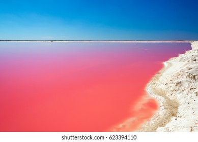 Beautiful red pool used for producing salt in the small town of Las Coloradas near Rio Lagartos, Mexico
