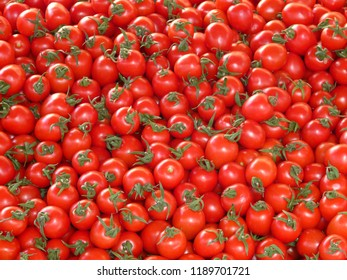Beautiful red ripe heirloom tomatoes grown in a greenhouse. Gardening tomato photography, Close-up of fresh, ripe tomatoes, fresh tomatoes plants, cherry tomatoes and basil on wooden board