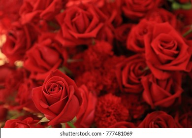 Beautiful red rose in flower bouquet.