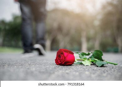 Beautiful red rose left on the walk way on sadness Valentine's day with a man who walk away from it. A broken heart or breaking up relationship concept.