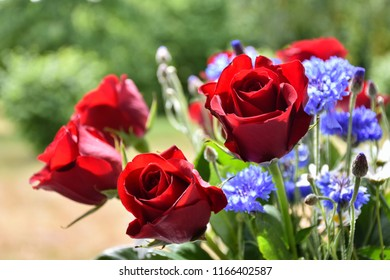 Beautiful red roses in a awesome flower bouquet