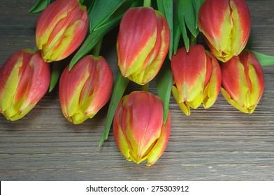 Beautiful Red tulip blooms on wooden background. Top view.