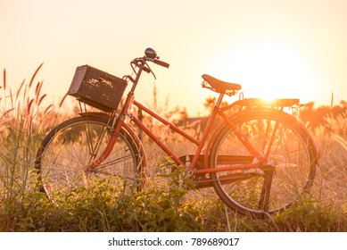 beautiful red vintage bicycle in grass field at sunset