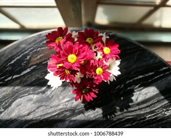 beautiful red and white flowers on the table