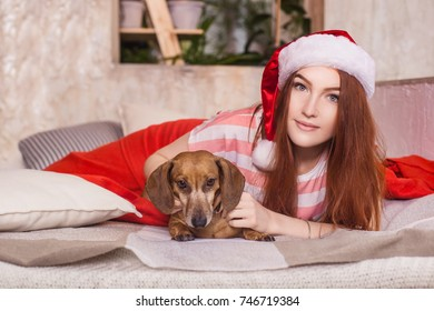 Beautiful red-haired woman with orange hair lying in bed with a dachshund. At home, a girl and a dog rest on a bed. On his head is a Christmas hat.