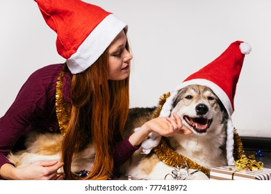 beautiful redhead in a red cap like Santa Claus celebrates the new year with his dog, a lot of gold tinsel