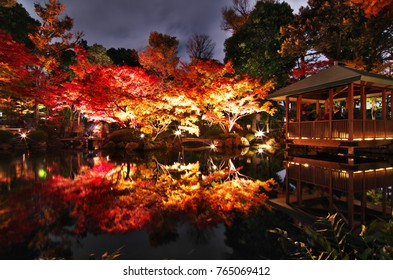 Beautiful reflection of autumn night view at the Otaguro Park in Tokyo, Japan. The autumn colors are beautifully illuminated in the evenings.