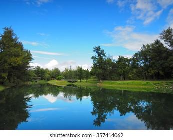 Beautiful reflection of a peaceful lake