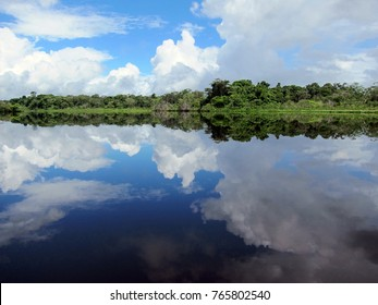 Beautiful reflection of rainforest and sky in a lake in Ecuador