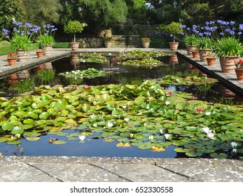 A beautiful reflective pool containing a fountain and lily pads surrounded by potted plants and flowers. Borde Hill Garden in West Sussex, England. The United Kingdom.