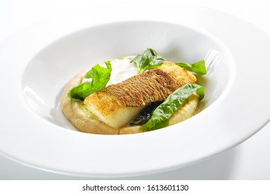 Beautiful restaurant plate of breaded fried halibut fillet with parsnip puree isolated. Exquisite seafood dish of grilled white fish meat or sole fish closeup