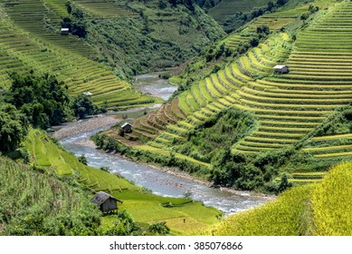 Beautiful rice paddy fields with hut on terraced of Mu Cang Chai, YenBai, Vietnam. Rice fields prepare the harvest at Northwest Vietnam.Vietnam landscapes.