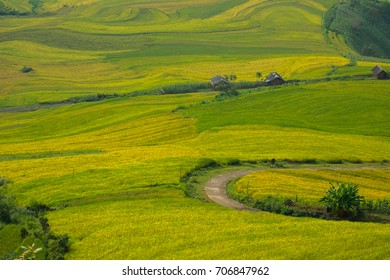 Beautiful of rice terraces landscape in Y ty, Sapa, Vietnam.
