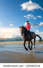 Beautiful rider on the beach