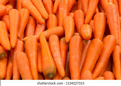Beautiful ripe carrot background, carrots are good for health, healthy ripe carrot for preparing meal