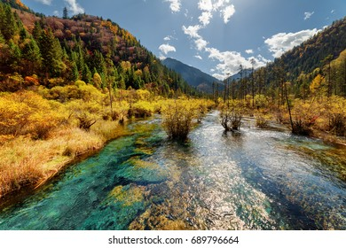 Beautiful river with crystal clear water among fall forest and scenic wooded mountains at the Rize Valley in Jiuzhaigou nature reserve (Jiuzhai Valley National Park), China. Amazing autumn landscape.