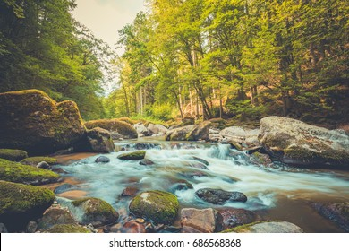peaceful nature images stock photos vectors shutterstock