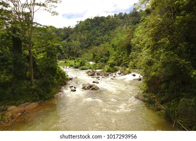 Beautiful River in Sinharaja Forest Reserve,  a national park and a biodiversity hotspot in Sri Lanka