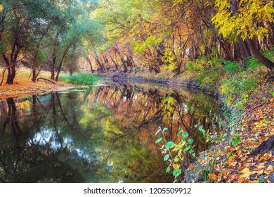Beautiful riverbank with colorful autumn trees