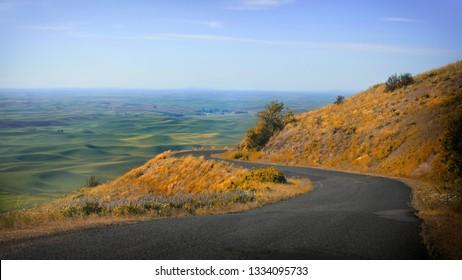 Beautiful road to Steptoe butte in Palouse