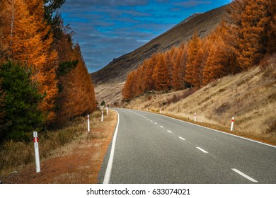 Beautiful road towards New Zealand Alps in autumn