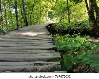 beautiful road of wooden planks on the Plitvice lakes