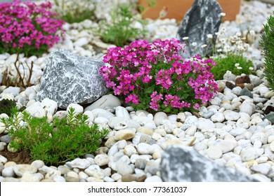 Beautiful Rock Garden Cultivated Roof Gardening