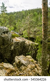 A beautiful rocky forest landscape in Finland