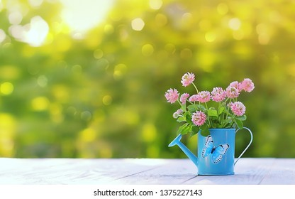 beautiful romantic composition with flowers clover. pink clover bouquet in blue watering can and butterfly. greeting card, symbol of tenderness. spring or summer season. copy space