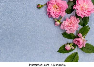 Beautiful, romantic rosy background