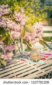 Beautiful and romantic scene in the home garden with a vase of Japanese cherry tree blossoms on the white table