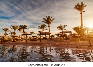 Beautiful romantic sunset over a sandy beach and palm trees. Egypt. Hurghada