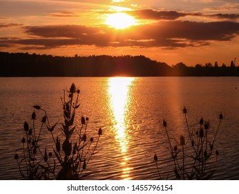 Beautiful romantic sunset. Reflections of light in the sea with cumulonimbus in the orange sky.Silhouette of vegetation and thistles and reeds in the foreground at the edge of the water of a lake.