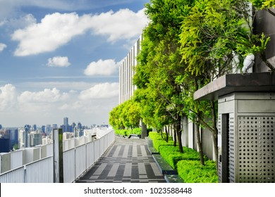 Beautiful rooftop garden. Outside terrace with amazing park and scenic city view. Modern benches under green trees along walkway. Urban eco design and mini-ecosystem. Landscaping in Singapore.