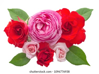 Beautiful rose flowers arrangement isolated on white background