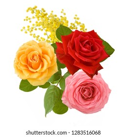 beautiful roses and mimosa bunch closeup isolated on white background
