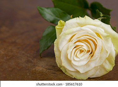 Beautiful roses on wooden background/holidays romantic background