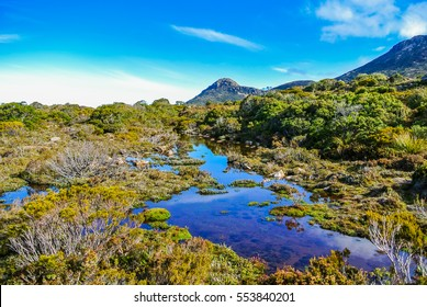 Beautiful rugged scenery with glacial lakes and alpine heath on remote mountain plateau at Hartz Mountains National Park, Tasmania