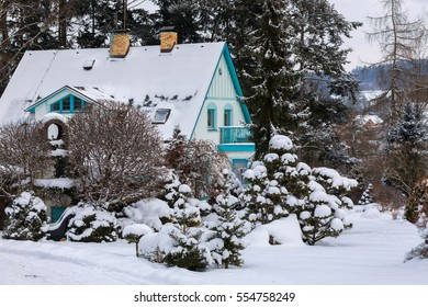 Beautiful rural house situated in evergreen winter garden with conifers covered by fresh snow