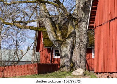 Beautiful rural landscape in springtime with typical red wooden houses, in the middle of Sweden, near Skara.