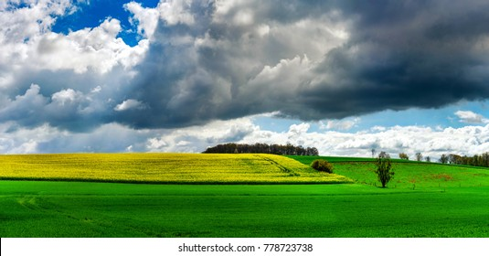 Beautiful rural landscape with vivid green field and white clouds on blue sky, Belgium