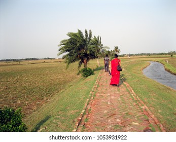 A beautiful rural path in the area of Sunderbans, West Bengal, India. The path is made of bricks only. Empty crop fields and a canal beside this path.