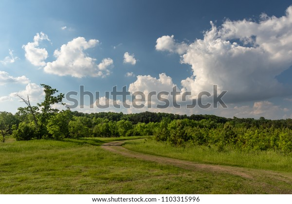 Beautiful Rural Visa with Partially Cloudy Skys and Forest