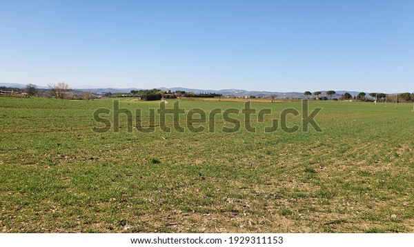 Beautiful Rurary scenery with cultivate fields in a sunny winter day