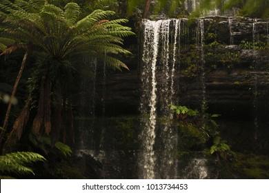 Beautiful Russell Falls in Mount Field National Park, Tasmania, Australia.