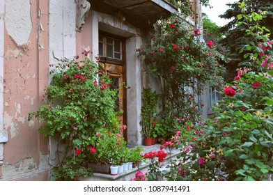 Beautiful rustic front porch decorated with garden flowers