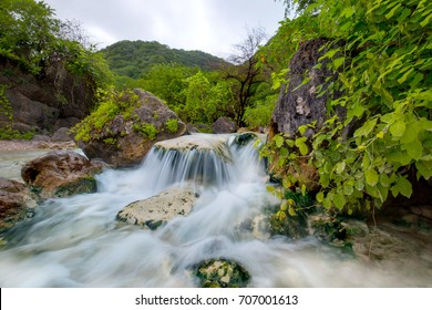 beautiful salalah
