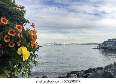 Beautiful San Francisco skyline view from the marina in Sausalito, California.